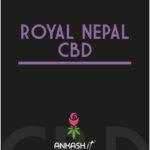 ROYAL NEPAL